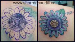 passion flower cover up