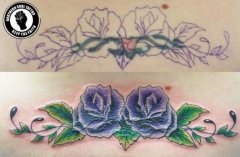 roses-cover-up